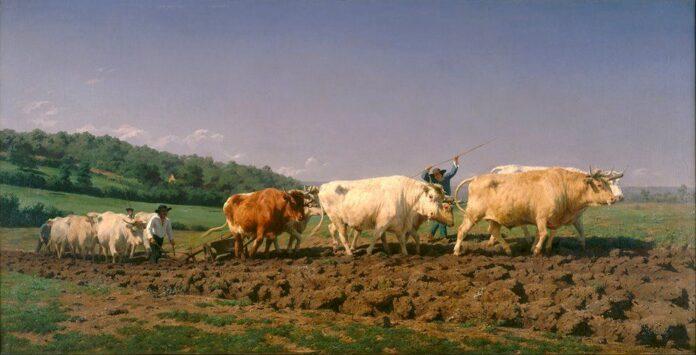 Marie-Rosalie Bonheur nació el 16 de marzo de 1822 en Burdeos, Francia. Fue una de cuatro hijos. La mayor influencia en su vida, tanto artística como social, fue su padre, Oscar-Raymond Bonheur